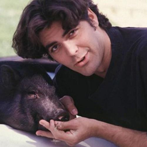 Aktoriaus ir kiaulės draugystės istorija